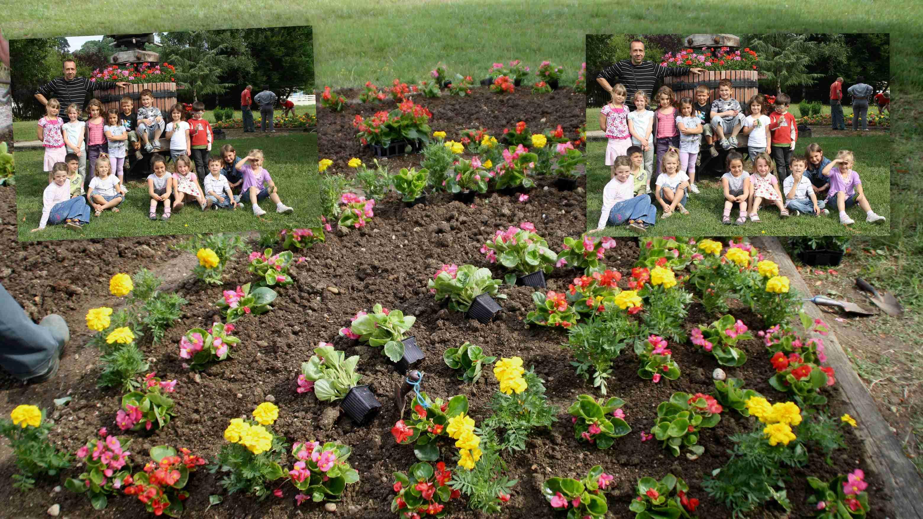 Plantation des fleurs avec comite de fleurissement for Plantation de fleurs